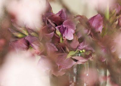 Von Blumen Frühjahr 2019