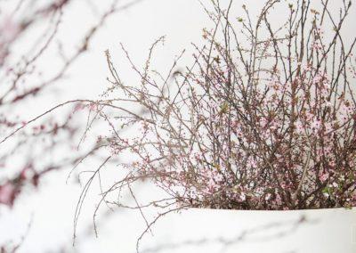 © Von Blumen